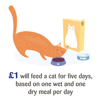 £1 will feed a cat for five days, based on one wet and one dry meal per day.