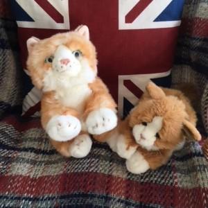 Jasper and Cuddly Cat
