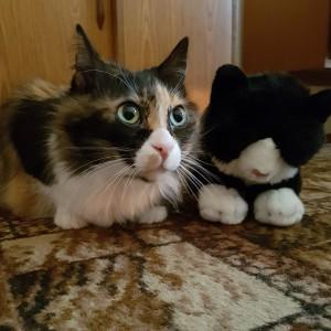 Zouzou and friend