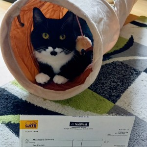 """""""We won £10 on the summer Cat Lovers Raffle!!!  Chernish is very happy with his new tunnel and can not get enough of it... Running, sleeping, playing with it.....enjoying his wining A LOT!!!"""""""