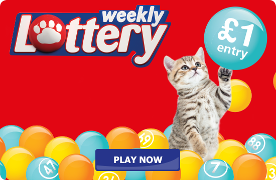 Join the Weekly Lottery
